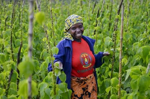Female farmer in Rwanda