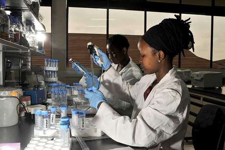 Women working in the BecA-ILRI Hub, in Nairobi, Kenya (photo credit: ILRI/David White).
