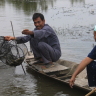 Fishermen in Mekong river delta