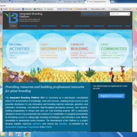 Integrated Breeding Portal