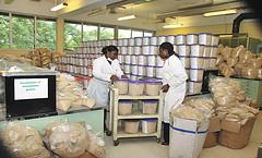 Aflasafe – a biological control agent against aflatoxin