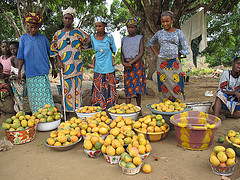Fruits_as_a_result_of_agroforestry-CharliePye-Smith/ICRAF