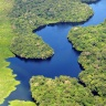 An aerial shot of the Amazon. Photo: Neil Palmer/CIAT