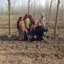 Nikki and Gaurav Chaudhary (center) and their staff on their farm's poplar tree plot. Photo by Nikki Pilania Chaudhary/Chaudhary Farms (Pilibhit,India) – chaudharyfarms(at)gmail.com