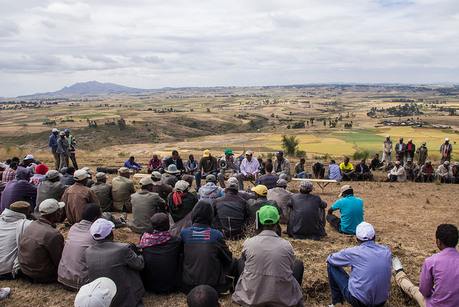 Farmers sharing their experiences with new wheat seed varieties (photo: Pete Chinn/ICARDA)