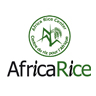 AfricaRice : Innovation systems approaches–the way forward for agricultural R4D