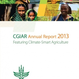 2013-annual-report-download