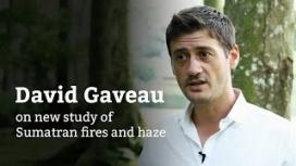 David Gaveau on new haze study