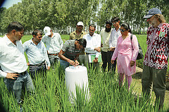 CCAFS Management Team Visits India: Assessing and Widening Climate Smart Villages