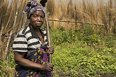 Beatrice Mwala stands in her vegetable garden in the Batorse Floodplain, Zambia. Photo by  Anna Fawcus.