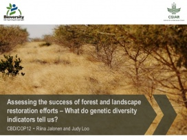 Assessing the success of forest and landscape restoration efforts – What do genetic diversity indicators tell us?