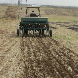 Conventional seeders have to be specially modified in order to enable zero-till conservation agriculture, with a raised seed hopper and stronger tines