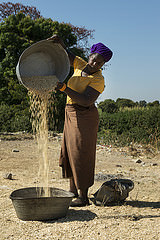 Woman preparing maize for sale. Photo by Anna Fawcus.