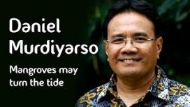 Daniel Murdiyarso – Mangroves may turn the tide