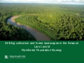 Shifting cultivation and forest landscapes in the Amazon