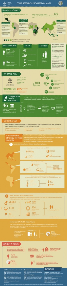 Infographic factsheet: The World of Maize