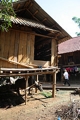 Vietnamese house shelters livestock under the living space