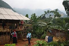 Vietnamese farm and landscape